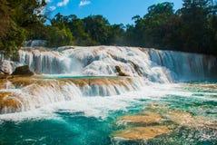 Bajecznie Agua Azul yucatan Meksyk Ogromne kaskady na siklawie blisko Palenque Obrazy Royalty Free