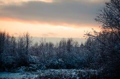 Bajecznie Rosyjska zima 777 obrazy stock