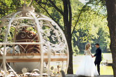 Bajka ślubu pary szczęśliwy odprowadzenie w parku z koniami Fotografia Stock