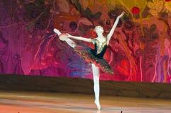 Bajka balet Obraz Royalty Free