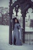 Bajka młoda kobieta fotografia royalty free