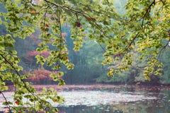 Bajka ranku krajobraz turkusowy jezioro Obrazy Royalty Free