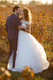 Bajki romantyczna para nowożeńcy ściskać zdjęcia stock