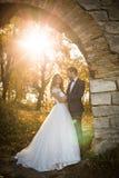 Bajki valentyne nowożeńcy pary romantyczny przytulenie Obrazy Royalty Free