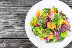 Bajo-calorías frescas deliciosas de ensalada de las hojas de la pechuga de pollo y de la lechuga Foto de archivo