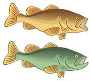 Bajo de los pescados ilustración del vector