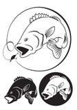 Bajo de los pescados stock de ilustración