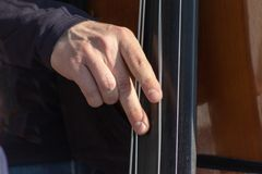 Bajo doble, manos que juegan y dejar caer las secuencias del contrabajo, cierre del jugador del instrumento musical para arriba foto de archivo libre de regalías
