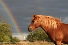 Bajo el arco iris Imágenes de archivo libres de regalías