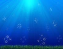Bajo escena del agua   Imagen de archivo