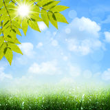 Bajo los cielos azules. Fotografía de archivo libre de regalías