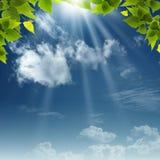 Bajo los cielos azules. Imagen de archivo