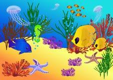 Bajo vida del agua Imágenes de archivo libres de regalías