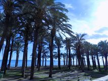 Bajondillo Andalusia zdjęcie stock