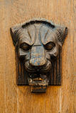 Bajorrelieve de madera de la cabeza de un león Imágenes de archivo libres de regalías