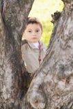 bak allvarlig tree för pojke Royaltyfri Bild