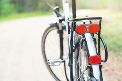 Bak av cykeln i skogen, DOF Arkivfoton