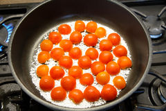 Bak de tomaten royalty-vrije stock foto's