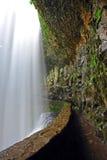 bak fotvandra trailvattenfall royaltyfria bilder