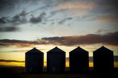 bak fyra silos som sunsetting Arkivfoton