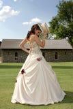 bak hattskinn Royaltyfria Bilder