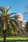 bak kyrkliga gammala trees Arkivbild