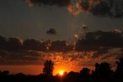 bak sörja plattform sommarsolnedgångtrees två Arkivbilder