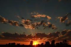 bak sörja plattform sommarsolnedgångtrees två Arkivfoto