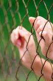 bak staket ii Royaltyfria Foton