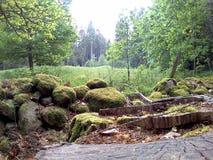 Bak stenarna Fotografering för Bildbyråer