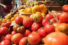 Bak van kleurrijke tomaten Stock Foto's