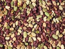 Bak van multi-colored bonen in een Mercado royalty-vrije stock foto's