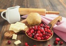 Baka en syrlig Cranberrychoklad arkivfoto