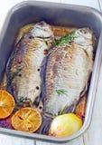 Bakad fisk Fotografering för Bildbyråer