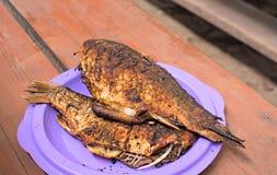 Bakad fisk på plattan Royaltyfri Fotografi
