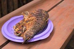 Bakad fisk på plattan Royaltyfri Bild