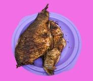 Bakad fisk på plattan Fotografering för Bildbyråer