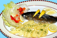 bakad fiskplatta Royaltyfri Foto