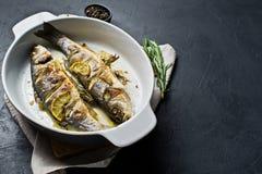 Bakad havsbas i en stekhet maträtt Svart bakgrund, bästa sikt, utrymme för text royaltyfria foton
