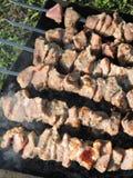bakad meat Arkivfoto
