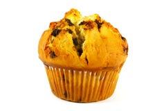 bakad muffin Fotografering för Bildbyråer