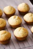 bakad nytt vanilj för muffiner för rastermetall Arkivbilder