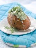 Bakad potatis royaltyfri foto