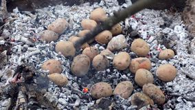 Bakad potatis i brand stock video