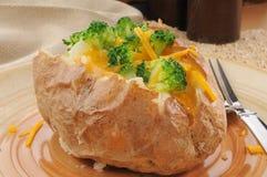 Bakad potatis med broccoli och ost arkivbilder