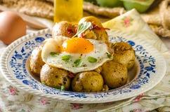 Bakad potatis med chili och det stekte ägget fotografering för bildbyråer