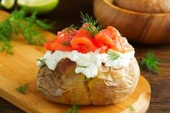 Bakad potatis med kräm av gräddosten och den rimmade laxen, royaltyfri fotografi