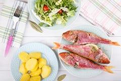 Bakad röd multefiskar som tjänas som med kokta potatisar och grön sallad arkivfoto