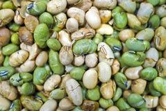 bakad soybean Arkivfoto