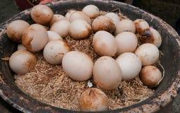 bakade ägg Royaltyfria Bilder